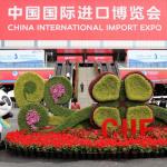 china_import_expo_gate